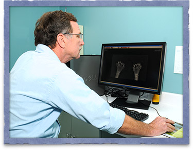 Digital Pet Radiology in Easton